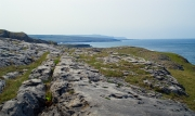 The Burren, Cliffs of Moher in the Background